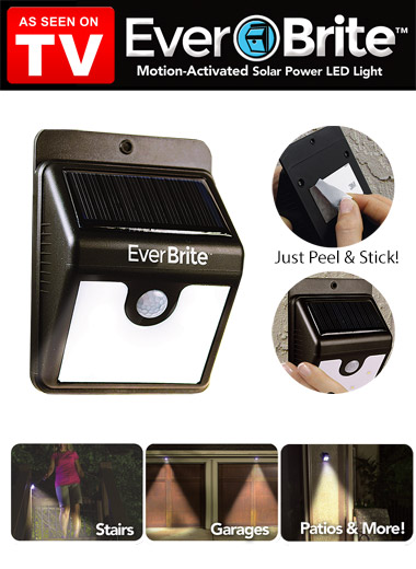 EverBrite Motion Activated Outdoor LED Light