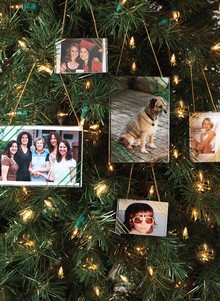 Set of 16 Photo-Frame Ornaments